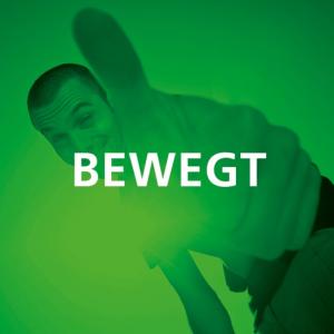 FEG Logo 2a
